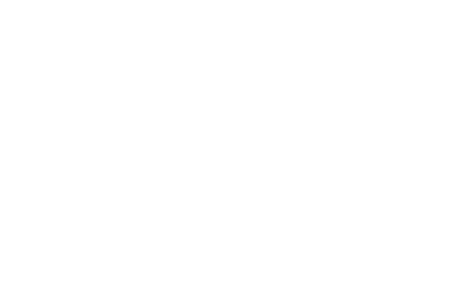 fly films
