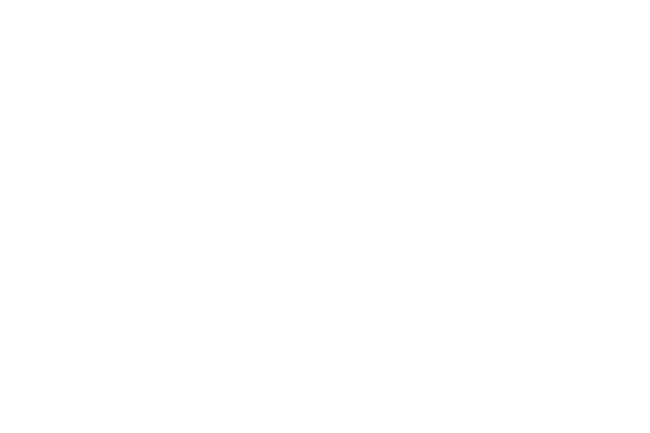 synthes